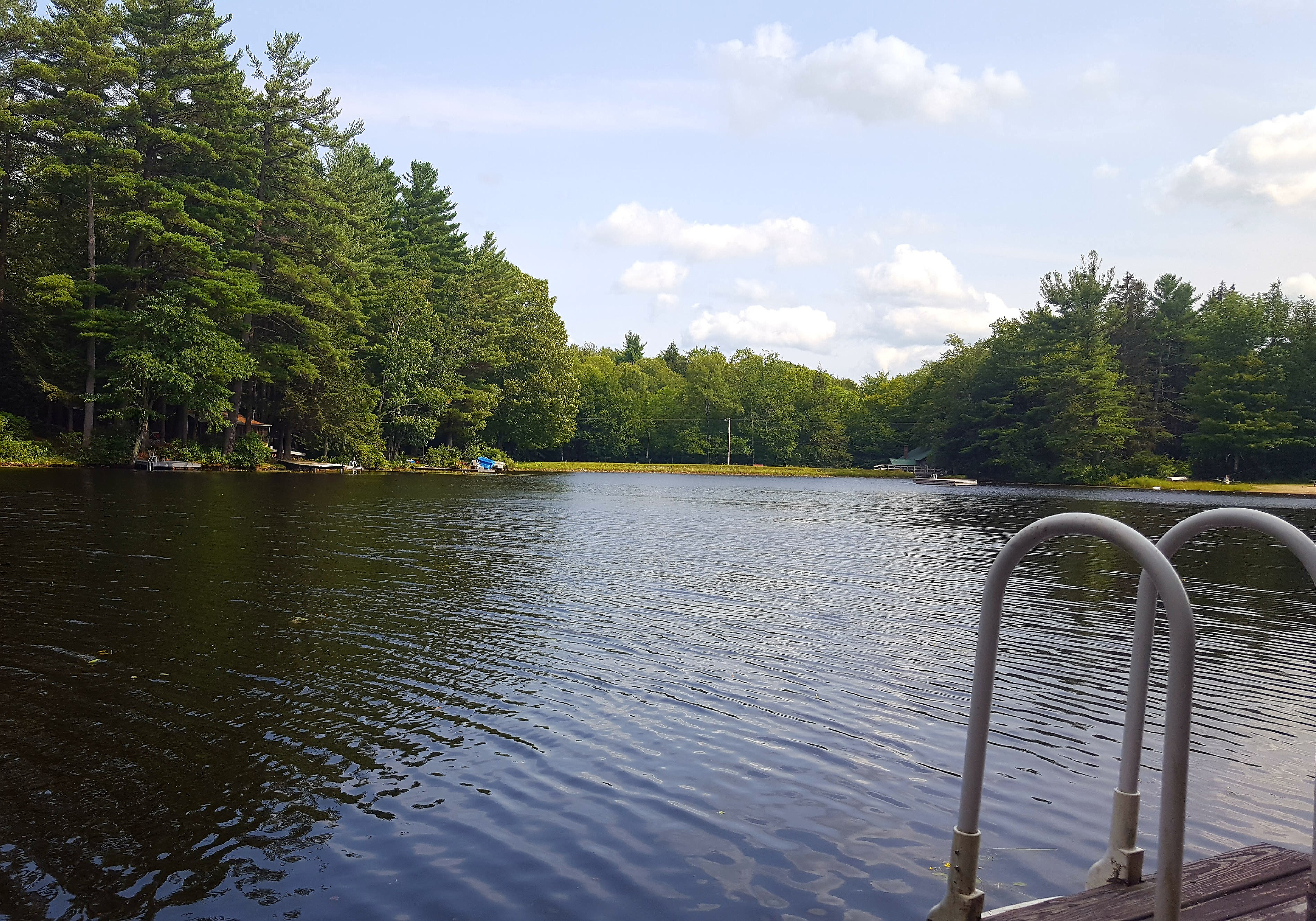 On Damon Pond