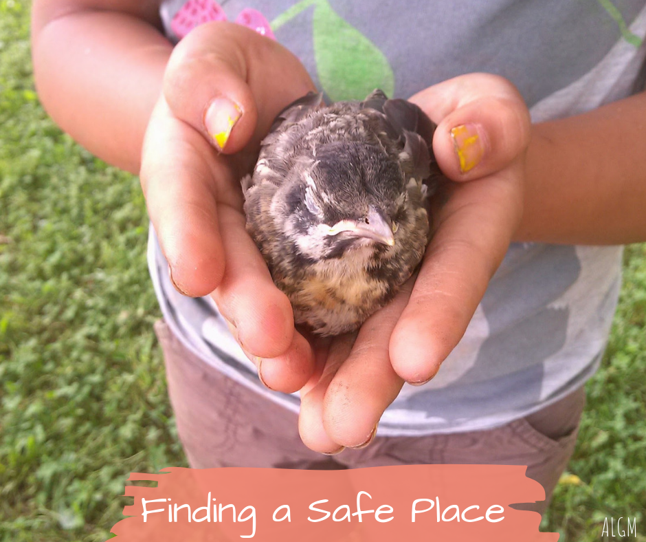 Finding a Safe Place