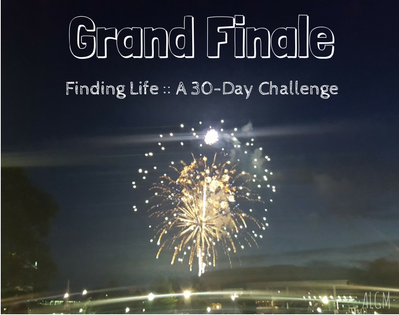 Grand Finale {Finding Life :: A 30-Day Challenge}