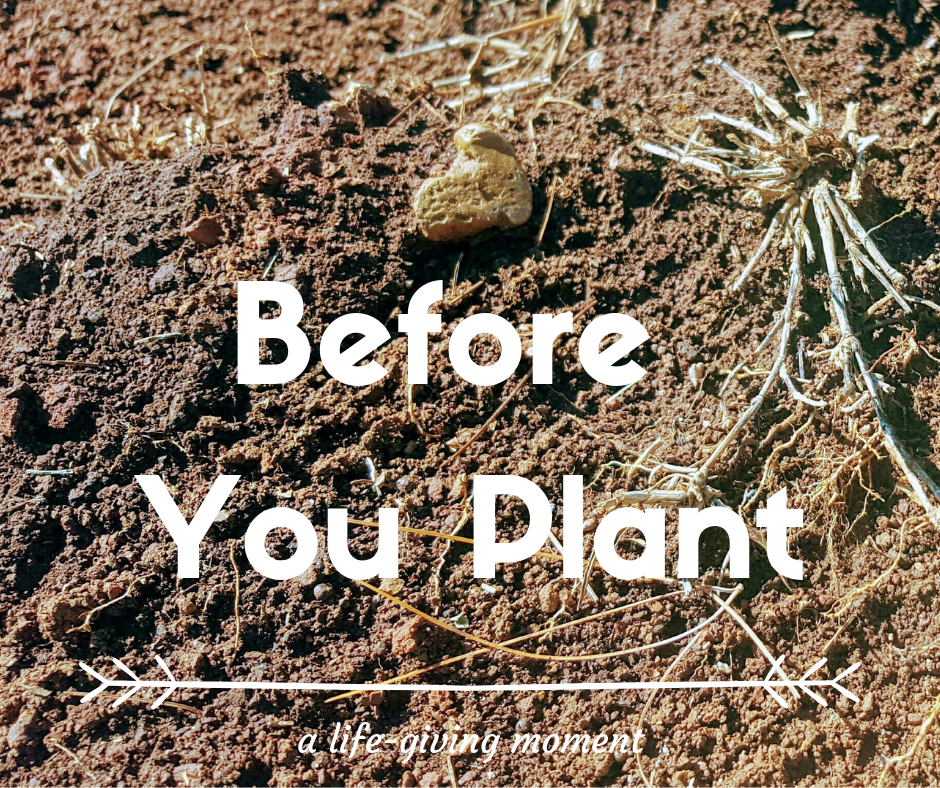 Before You Plant {More Quotes and Questions || Lent~Week 2}